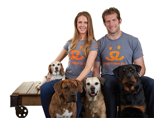 While David Backes knows that his position as the captain of the St. Louis Blues has helped raise the profile of Athletes for Animals, it's his wife Kelly who is the driving force behind the program to call attention to the global problem of homeless pets