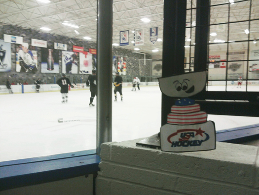 Flat Stanley Cup takes in a L.A. Kings practice at the Toyota Center: Photo submitetted by USA Hockey
